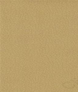 Carabu c/102