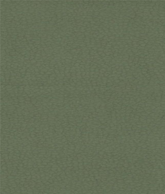 Carabu c/110