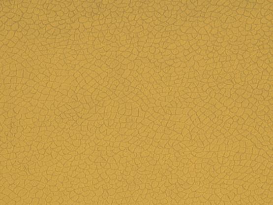 bora terra 25